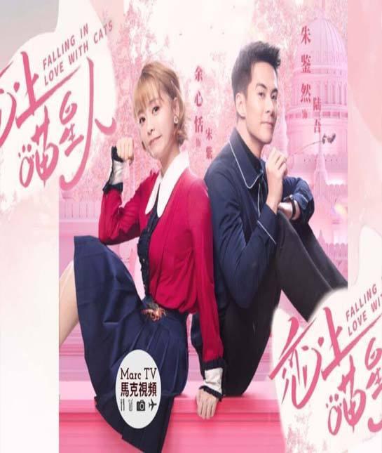 Falling in Love With Cats (2020) ตกหลุมรักสาวแมวเหมียว ซับไทย ตอน 1 – 24 End
